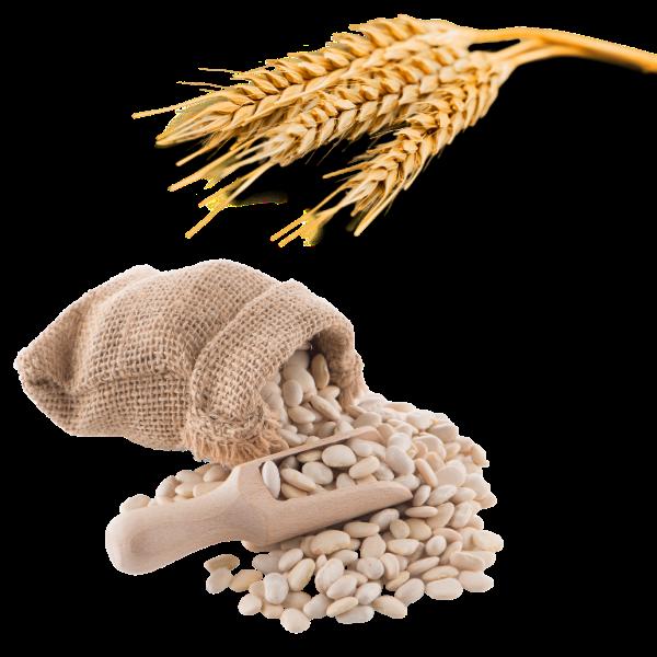 Getreide / Bohnen